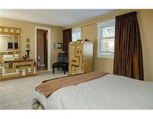Fully Furnished 3 Luxurious Rooms Available MAY TO AUGUST