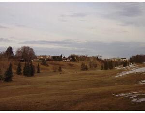 GREAT 3BR NE EDMONTON TOWNHOUSE FOR RENT Edmonton Edmonton Area image 8
