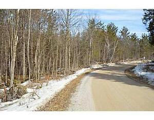 Land for Sale ------- Rural Residential / RECREATIONAL Belleville Belleville Area image 5