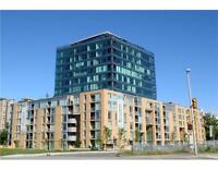 Lovely Condo for Sale in Lebreton Flats