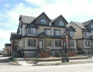 Terwillegar Towne Fully furnished executive suite - 2 bedroom