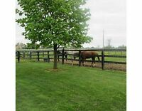 HOBBY/HORSE FARM 34 ACRES INDOOR ARENA CLOSE TO KW