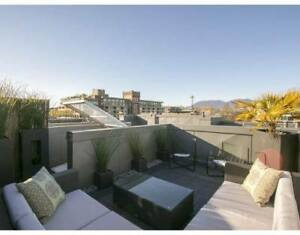 Apartment (loft) with roof top garden for rent