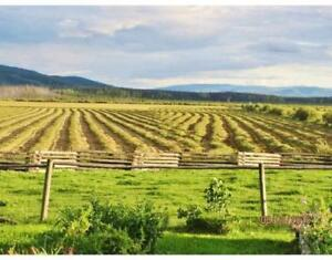 Horse property for sale in South Okanagan- Contact us