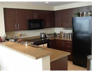 Kitchen Cabinets, Counters and Appliances