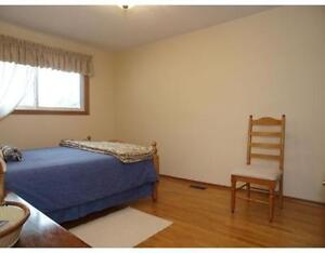 Spring Student Room rental - Large beautiful home