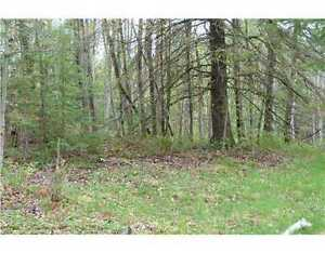 BUILDING LOT IN HURDS LAKE AREA WITH WATER ACCESS