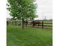HOBBY/HORSE FARM 34 ACRES CLOSE TO GUELPH  WITH INDOOR ARENA