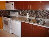 2 BED 2 BATH - ORLEANS - CARPET FREE - AVAIL NOW!