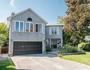 ***Custom Built Gem in the Heart of the Hamlet***