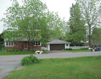 4 Bedroom House Down the Street from Algonquin College