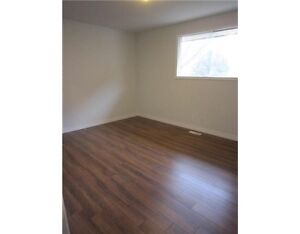 Large 5 Bedroom House for Rent - Move in Today! Kitchener / Waterloo Kitchener Area image 4