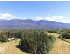 2470 JENSEN ROAD McBride, British Columbia