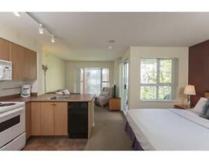 Fully furnished studio at downtown Vancouver - Beach Avenue