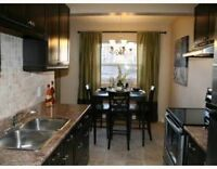 3 Bedroom Condo for rent available Sept. 1st.