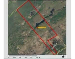Land for Sale ------- Rural Residential / RECREATIONAL Belleville Belleville Area image 2