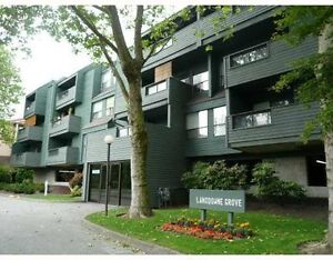 2 Bedroom apartment at Richmond Lansdowne Center