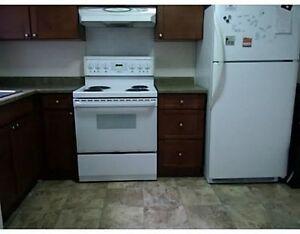 4 Bedroom Student Rental (3 available) Kitchener / Waterloo Kitchener Area image 3