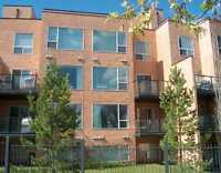 *** EXECUTIVE STYLE CONDO WITH 2 PARKING SPOTS IN RIVERDALE ***