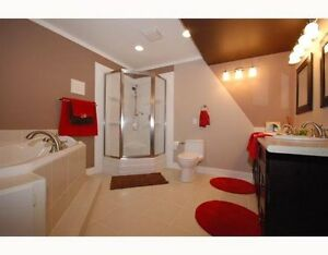 BRIGHT MODERN BASEMENT SUITE 4 RENT DEC. 1 Edmonton Edmonton Area image 1
