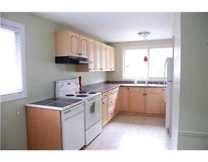 ALL INCLUSIVE STUDENT HOUSE FOR RENT, 3 BEDS, WATERLOO, LAURIER