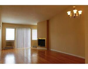 Gorgeous 2 bedroom condo for rent -Rockland