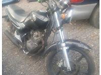 SYM XS125 K 2008 ONLY 9900 MILES NEW MOT not Yamaha ybr 125 kymco suzuki honda