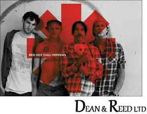 Red Hot Chili Peppers - Red Asterix - Maxi Poster - 61cm x 91.5cm (0054)