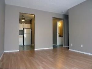 2.5 month rent free!! Newly renovated apartment!