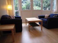 Amazing Double room in Roehampton University & Feels like home