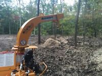 Tree service / forest management