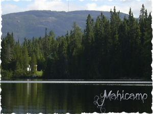 Chalet sur le bord de l'eau Saguenay Saguenay-Lac-Saint-Jean image 8