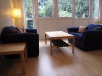 AMAZING DOUBLE ROOM IN PUTNEY & FEELS LIKE HOME