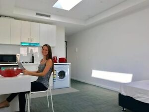 Studio to rent in Dulwich Hill Arncliffe Rockdale Area Preview
