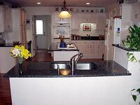 kitchen/bath countertops with granite/quartz