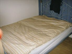 Single room available for a girl :: short let 19 - 30 December over Christmas/New Years holidays