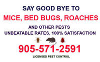 PROFESSIONAL PEST CONTROL. LICENSED MOUSE RAT REMOVAL 9055712591