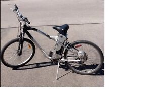 Schwinn iZip electric bicycle - new batteries installed