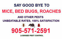 PEST CONTROL. MOUSE, RAT, ROACH, BED BUG REMOVAL 905.571.2591