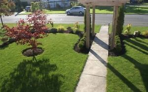 Best sod installation and landscaping services London Ontario image 3