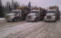 Looking for 2 log truck drivers