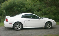 2004 Ford Mustang 40th Anniversary Edition Coupe (2 door)