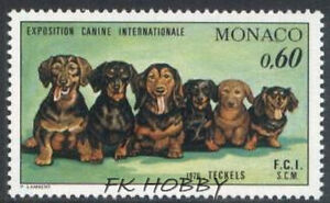Monaco 1976 Mi 1219 ** Pies Dog Hund Dackel Animals Pets Tiere - <span itemprop='availableAtOrFrom'> Dabrowa, Polska</span> - Monaco 1976 Mi 1219 ** Pies Dog Hund Dackel Animals Pets Tiere -  Dabrowa, Polska