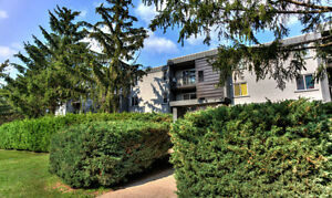 Renovated 2 BR Walking distance to Hospital & Sun Life