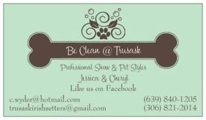 Professional Show and Pet Grooming