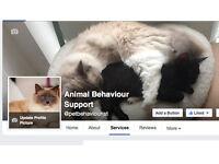 Animal Behaviour Support