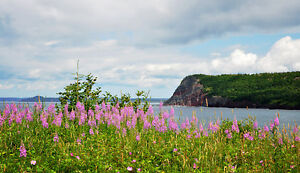 Ocean View Drive - Normans Cove, NL - MLS# 1133604 St. John's Newfoundland image 6