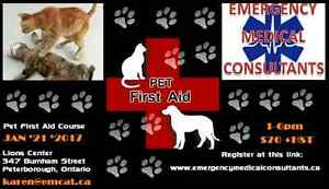 Pet First Aid Course Peterborough Peterborough Peterborough Area image 1