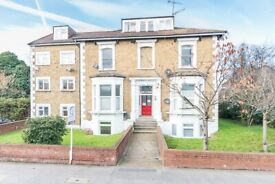 One Bedroom Basement Flat for Sale in South Norwood. Share of Freehold.