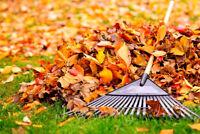 Homme à tout faire (nettoyage et ramassage feuilles)